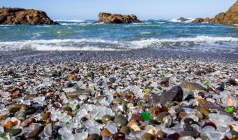 Příroda proměnila odpadky v poklad