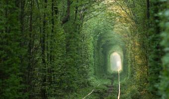 Tunel lásky láká zamilované páry z celého světa