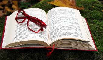 """Kniha napsaná bez jediného písmene """"e"""""""